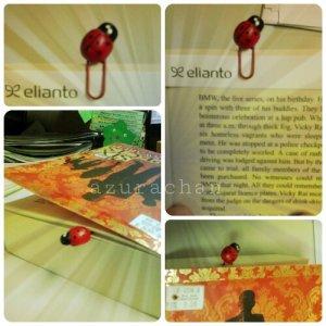wpid-ladybird-bookmark.jpg